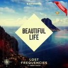 Lost Frequencies feat Sandro Cavazza - Beautiful Life
